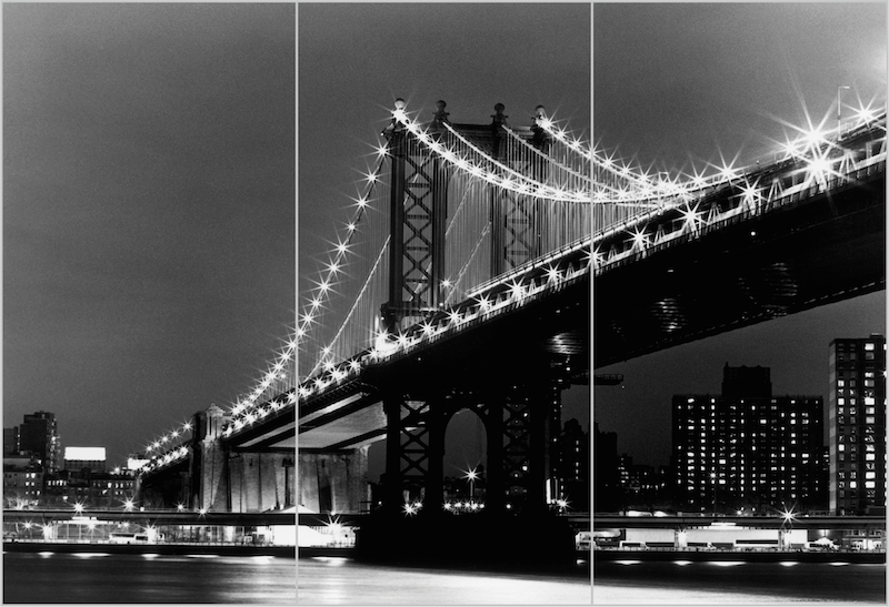 плотвы картинки черно белые мост давно было